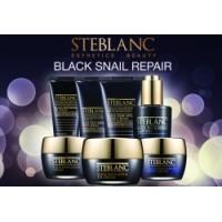 Black Snail Repair